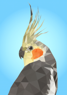 Cockatiel in Low-poly