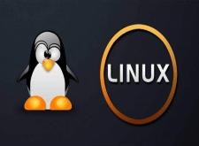Видеокурс. 1С Предприятие и Linux