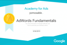 Базовый сертификат Google AdWords