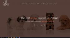 НЕЙМ для сайта по продаже элитных щенков КАНАДА