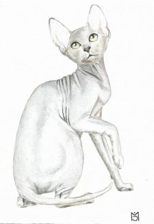 акварель, рисунок с фото