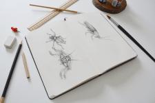 Иллюстрации к книге Ф. Кафка «Превращение»