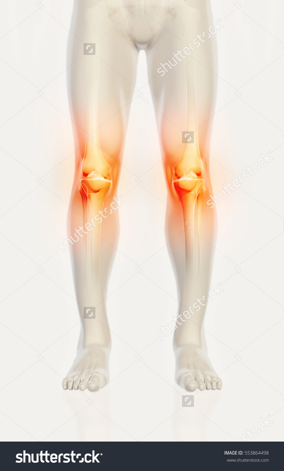 stock-photo-knee-painful-skeleton-x-ray-d-illustration-medical-concept-553864498.jpg
