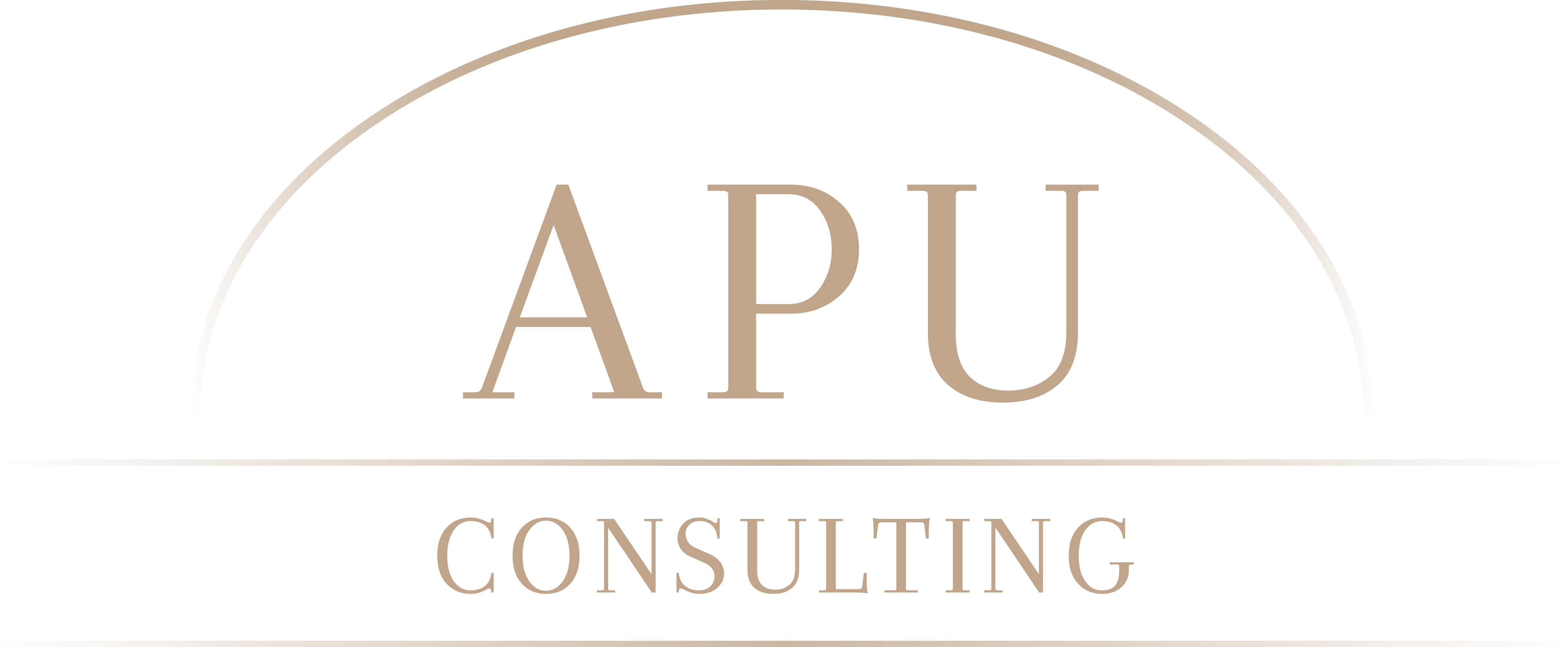logo_consulting.png