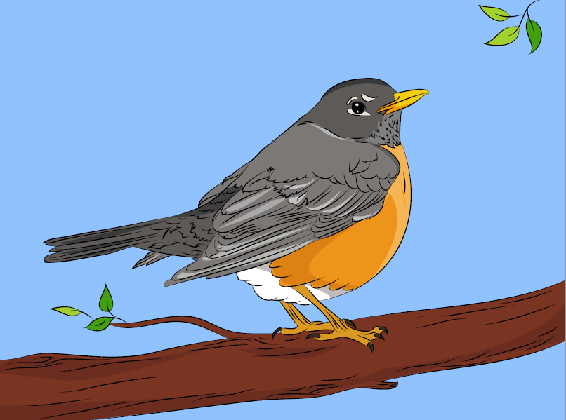 robin+bird+example+colored.png